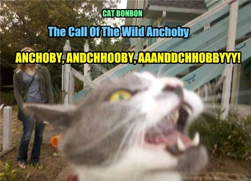 The Call Of The Wild Anchoby