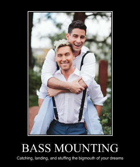 BASS MOUNTING