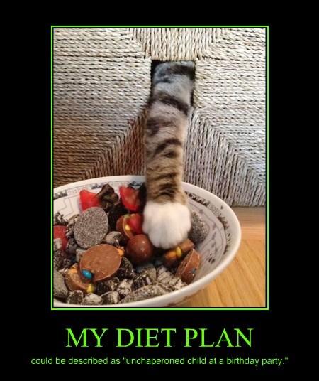 MY DIET PLAN