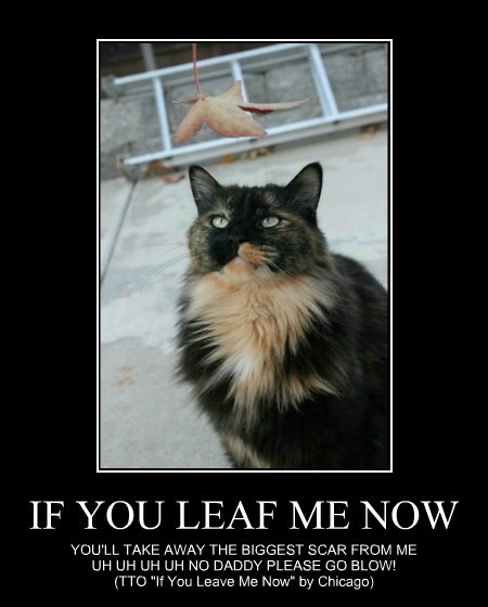 IF YOU LEAF ME NOW