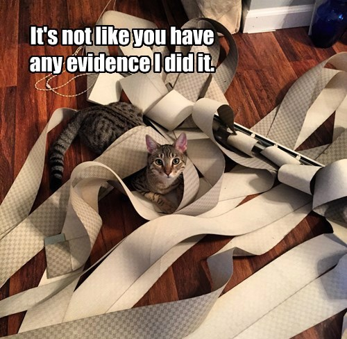 It's not like you have any evidence I did it.