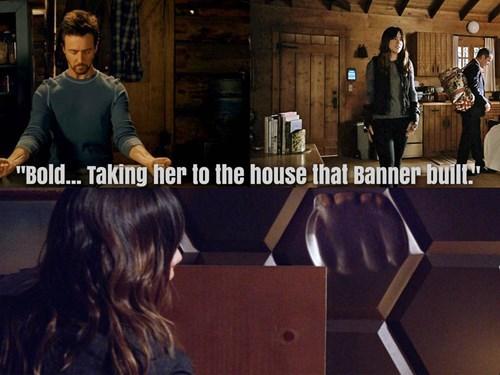 Skye's In Bruce Banner's Cabin