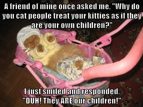 """A friend of mine once asked me, """"Why do you cat people treat your kitties as if they are your own children?""""  I just smiled and responded,                                                      """"DUH! They ARE our children!"""""""