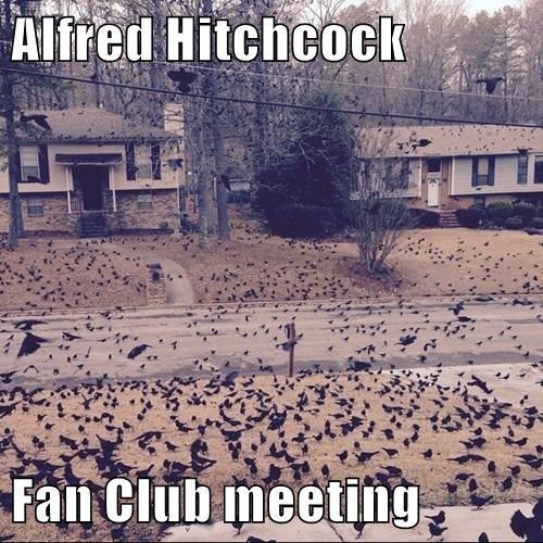 Alfred Hitchcock  Fan Club meeting