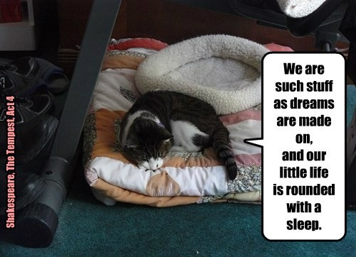 But we don't sleep in round things.