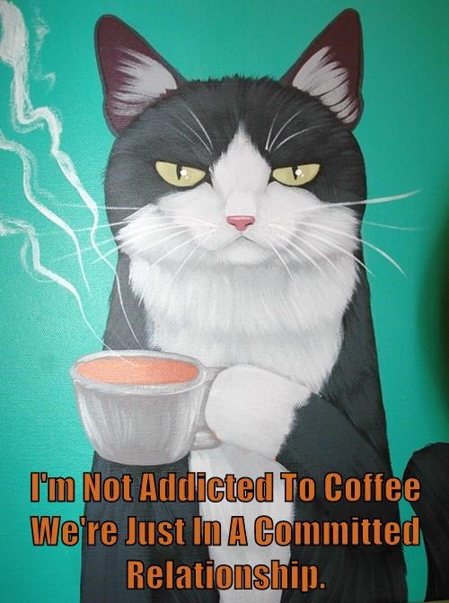 I'm Not Addicted To Coffee We're Just In A Committed Relationship.