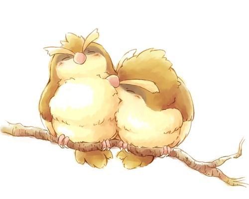 Pidgey Pair Bonding