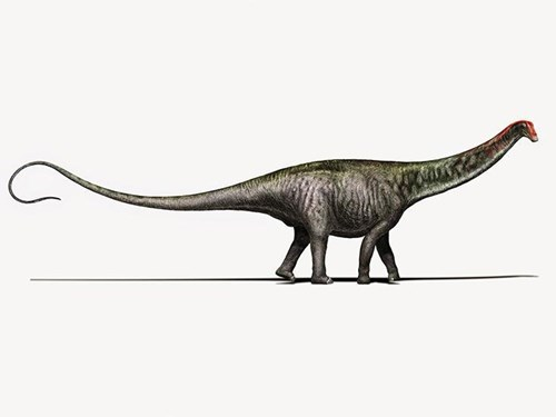 woo lets hear it for the brontosaurus