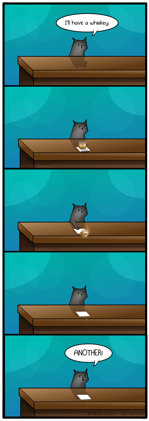 A Cat Walks Into A Bar (by The Oatmeal)