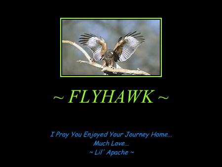 ~ FLYHAWK ~