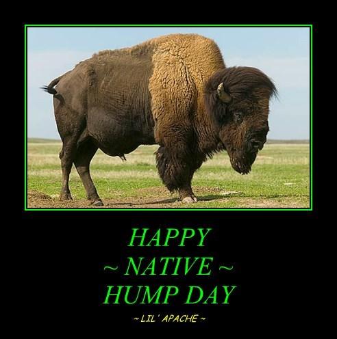 HAPPY ~ NATIVE ~ HUMP DAY