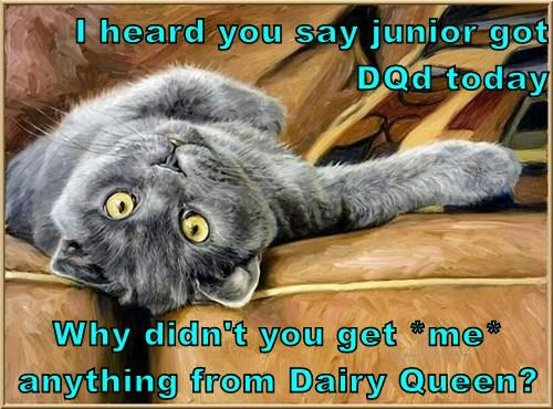 I heard you say junior got DQd today  Why didn't you get *me* anything from Dairy Queen?