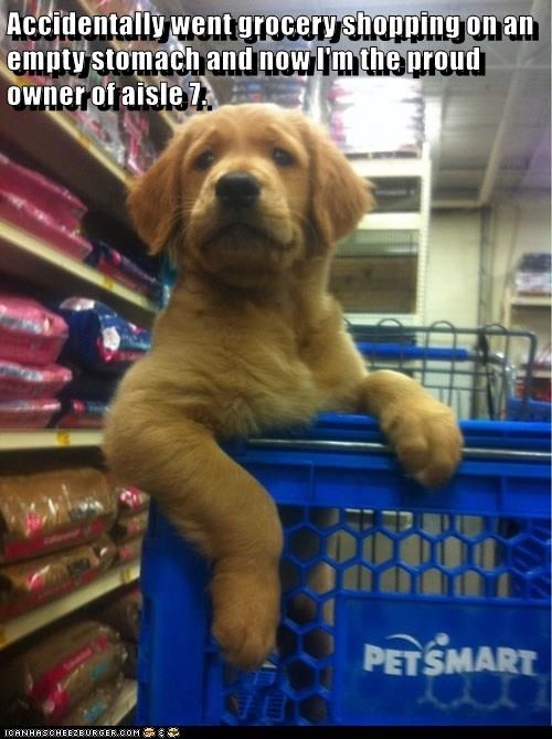 Accidentally went grocery shopping on an empty stomach and now I'm the proud owner of aisle 7.