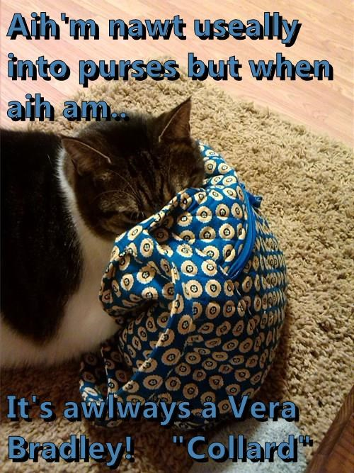 """Aih'm nawt useally into purses but when aih am..  It's awlways a Vera Bradley!    """"Collard"""""""