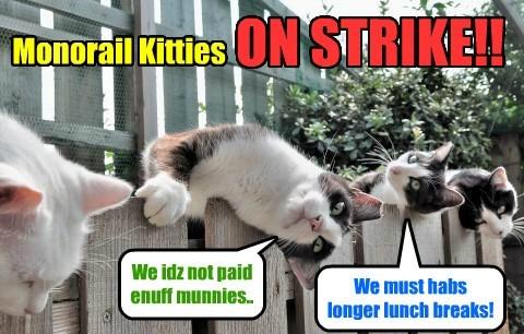 Monorail Kitties habs labor grievances!