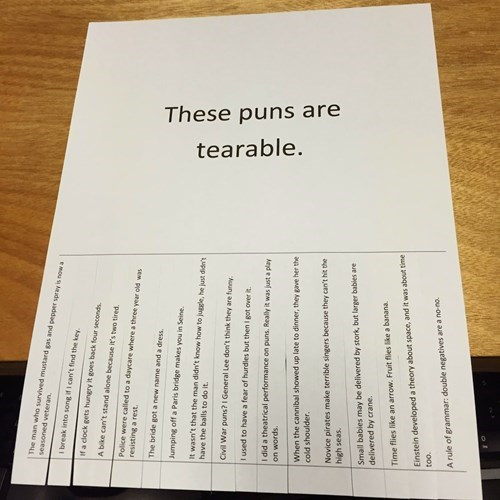 These Puns Are Total Ripoffs