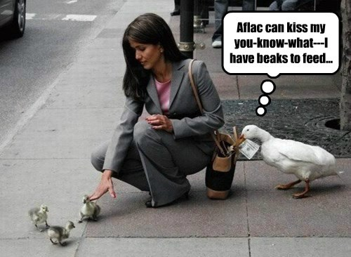 Aflac can kiss my you-know-what---I have beaks to feed...