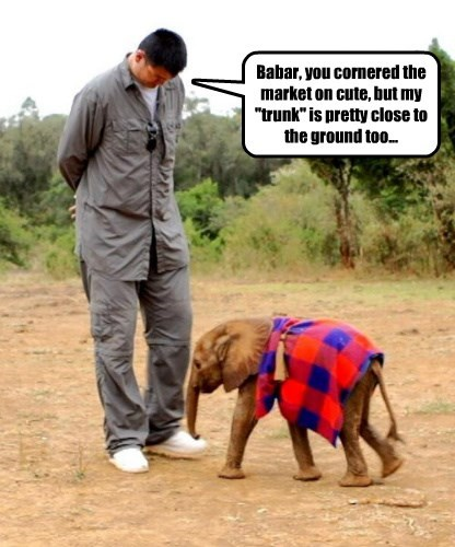 """Babar, you cornered the market on cute, but my """"trunk"""" is pretty close to the ground too..."""