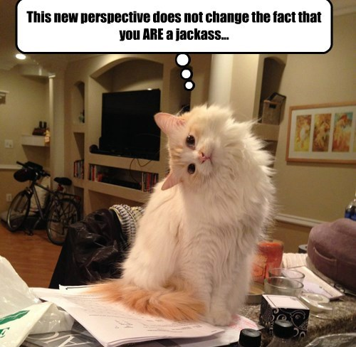 This new perspective does not change the fact that you ARE a jackass...