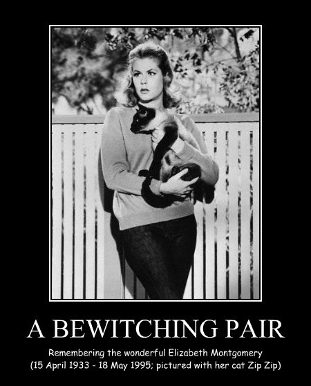 A BEWITCHING PAIR
