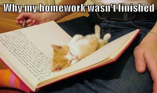 Why my homework wasn't finished