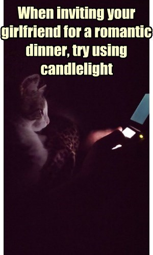 By Girlfriend I Mean Cat and By Candlelight I Mean Nintendo 3DS