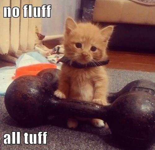 no fluff  all tuff