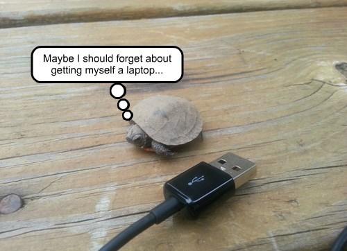 This Stupid Shell Is Enough to Lug Around