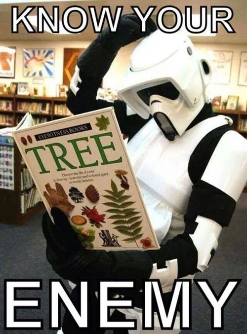 star wars,stormtrooper,force unleashed