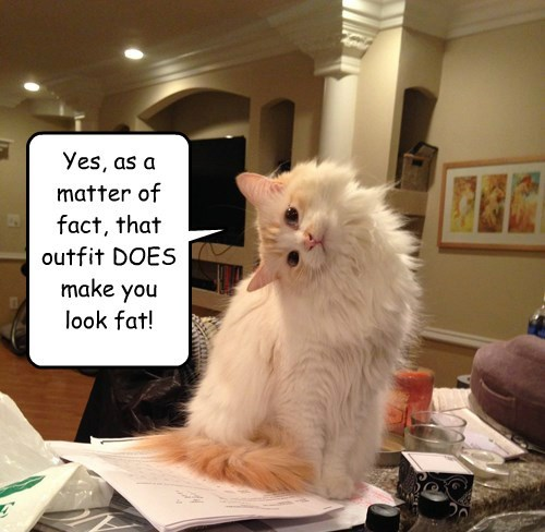 Yes, as a matter of fact, that outfit DOES make you look fat!