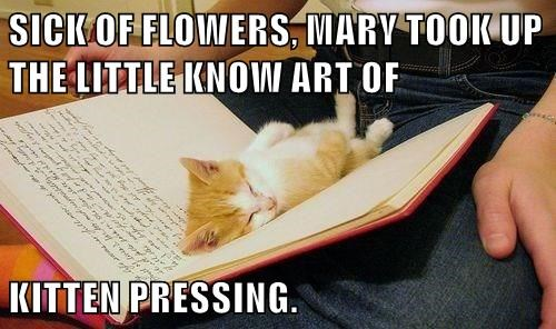 SICK OF FLOWERS, MARY TOOK UP THE LITTLE KNOW ART OF  KITTEN PRESSING.