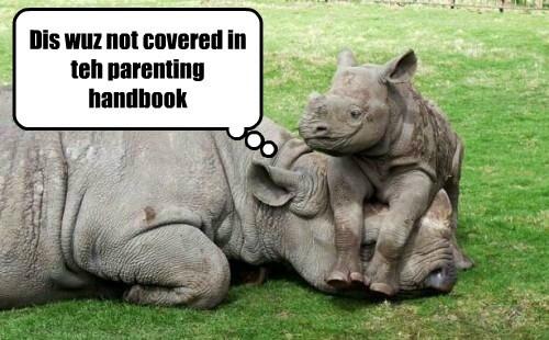 Dis wuz not covered in teh parenting handbook