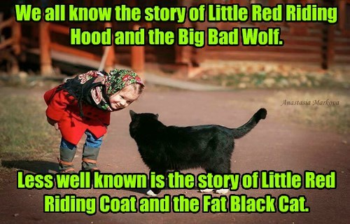 We all know the story of Little Red Riding Hood and the Big Bad Wolf.      Less well known is the story of Little Red Riding Coat and the Fat Black Cat.