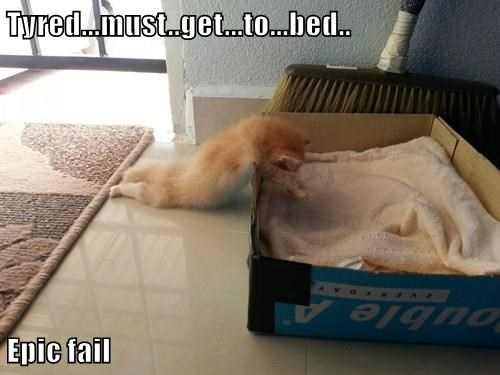 Tyred...must..get...to...bed..  Epic fail