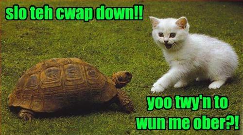 Cwazy Turtle iz Cwazy Fast