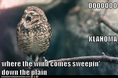 OOOOOOO KLAHOMA where the wind comes sweepin' down the plain