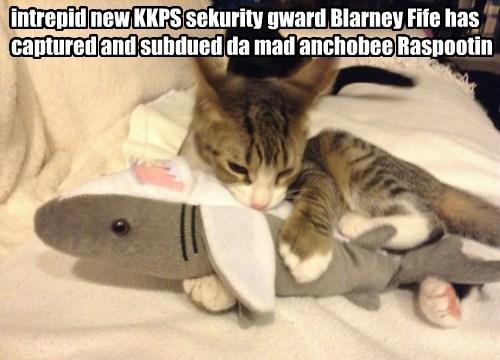 good job Blarney. except...dat's nawt an anchobee...dat's nawt a fish...dat's nawt eben alive