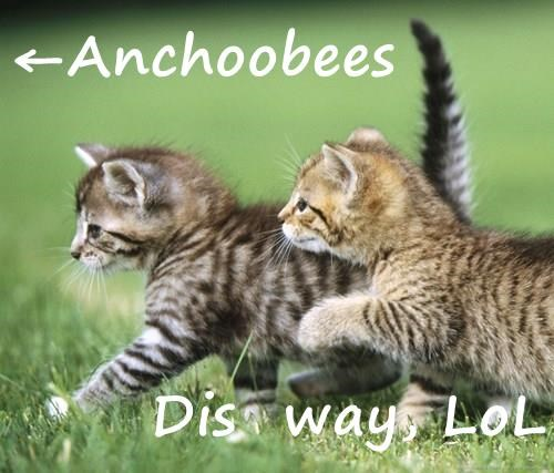 ←Anchoobees  Dis  way, LoL