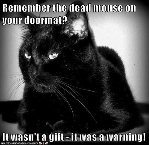 Remember the dead mouse on your doormat?  It wasn't a gift - it was a warning!