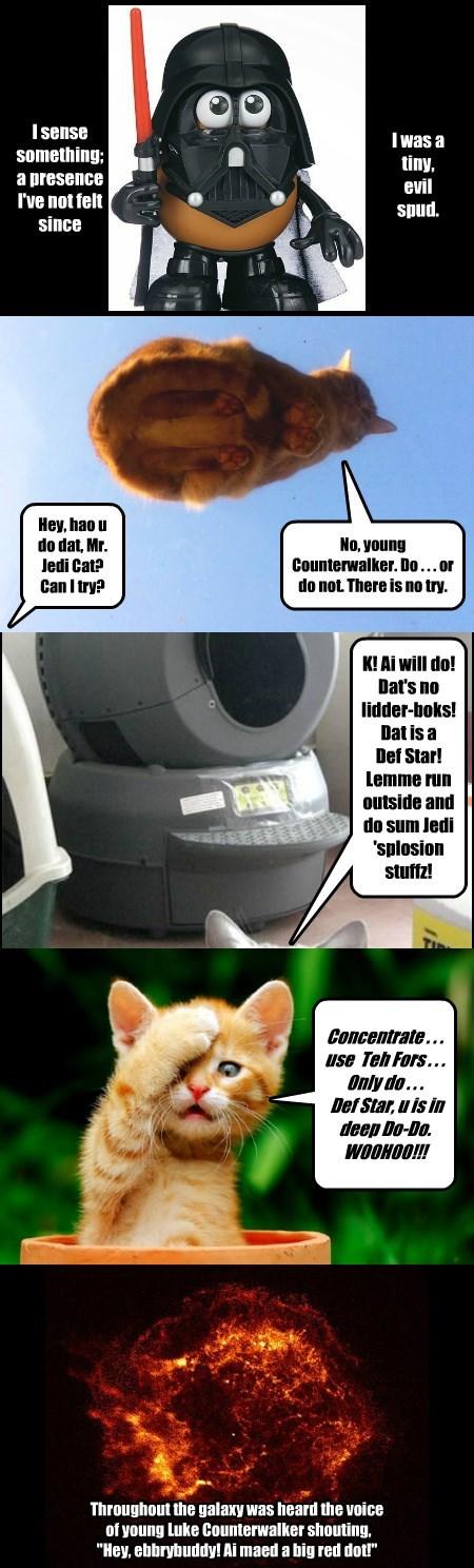 Cat Wars Episode E: Smak teh Ebil