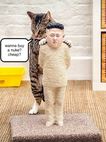 wanna buy a nuke?  cheap?