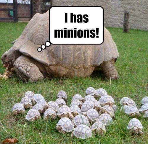 All Hail Our New Turtle Overlords!