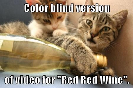 """Color blind version  of video for """"Red Red Wine""""."""