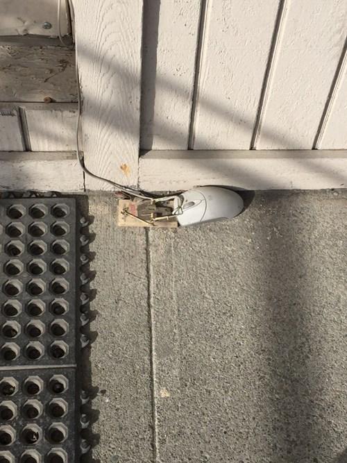 Seen Outside a PC Repair Shop