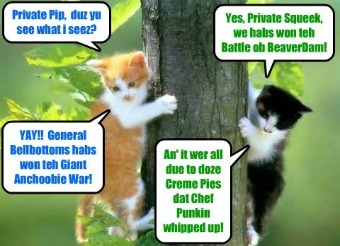 KKPS/Giant Anchoobie Conflict: On speshul assinements from General Bellbottoms, Privates Pip and Squeek monitor teh Battle of BeaverDam..