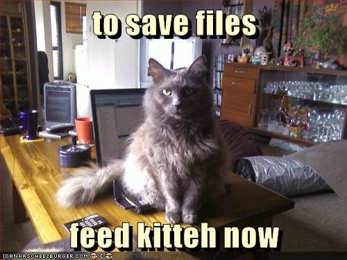 to save files   feed kitteh now