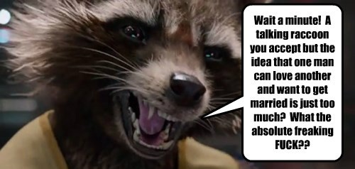 Wait a minute!  A talking raccoon you accept but the idea that one man can love another and want to get married is just too much?  What the absolute freaking f*ck??