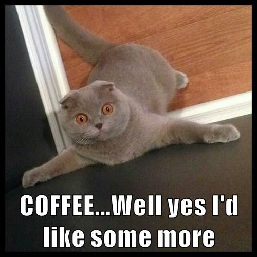 COFFEE...Well yes I'd like some more