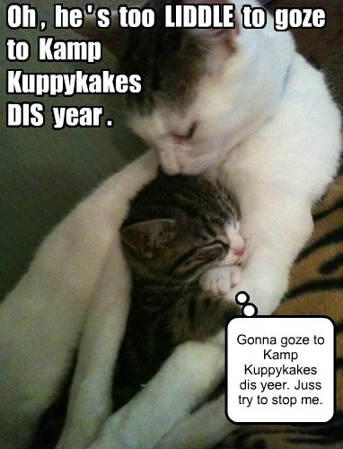 KKPS: By the time June comes around, she'll be BEGGING Kamp to take him.