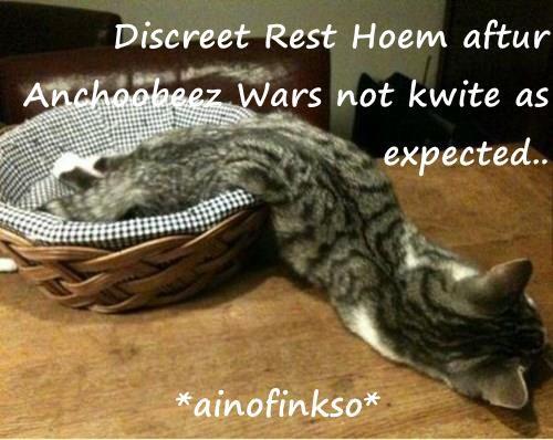 Discreet Rest Hoem aftur Anchoobeez Wars not kwite as expected..  *ainofinkso*